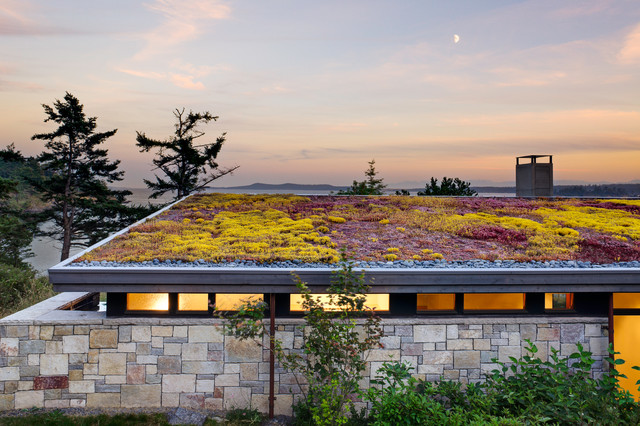 DT Green Roof2