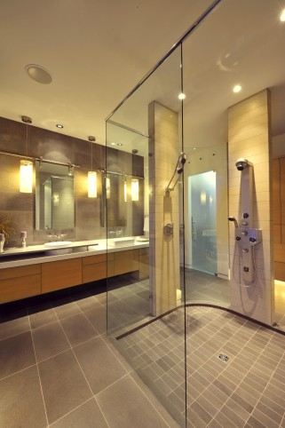 Open concept bathroom 2