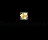 Black Mountain Community
